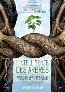 affiche-intelligence-arbres